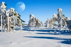 Giorno lunare fotografie stock