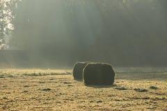 Giorno nebbioso con i raggi del sole e le balle di fieno nel parco in autunno Immagini Stock Libere da Diritti