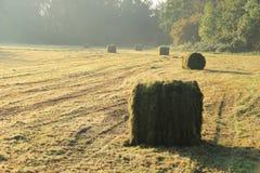 Giorno nebbioso con i raggi del sole e le balle di fieno nel parco in autunno Fotografie Stock Libere da Diritti