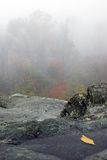 Giorno nebbioso lungo l'azionamento dell'orizzonte Fotografia Stock Libera da Diritti