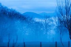 Giorno nebbioso nella campagna italiana fotografie stock libere da diritti