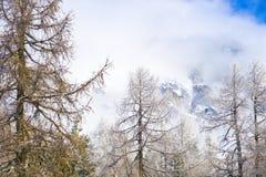 Giorno nebbioso nelle alpi Immagine Stock Libera da Diritti