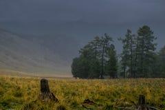 Giorno nebbioso nelle montagne di Altai, la Russia Fotografie Stock
