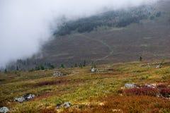 Giorno nebbioso nelle montagne di Altai, la Russia Immagini Stock