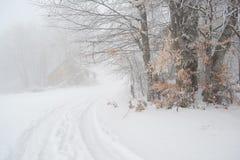 Giorno nebbioso sulla montagna e traccia in neve immagine stock libera da diritti