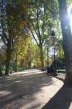 Giorno perfetto di Parigi nel parco immagine stock libera da diritti
