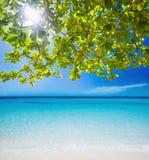 Giorno pieno di sole alla spiaggia Fotografia Stock