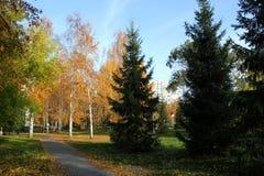 Giorno pieno di sole di autunno Fotografie Stock Libere da Diritti