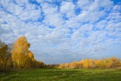 Giorno pieno di sole di autunno fotografia stock libera da diritti