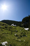 Giorno pieno di sole nelle alpi di Julian Fotografie Stock