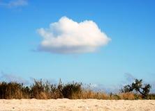 Giorno pieno di sole in steppa Fotografia Stock Libera da Diritti