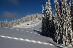 Giorno pieno di sole sulla montagna dell'Europa Orientale fotografie stock libere da diritti