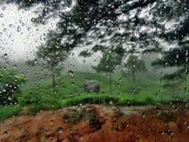Giorno piovoso Fotografia Stock