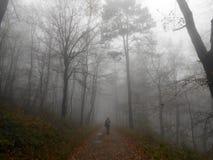 Giorno piovoso di autunno Immagini Stock Libere da Diritti