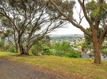 Giorno piovoso nel parco Wilson l'australia Fotografie Stock Libere da Diritti