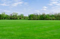 Giorno soleggiato bello in parco a tempo di molla Fotografia Stock
