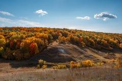 Giorno soleggiato caldo di autunno, colline e foresta dorata fotografia stock