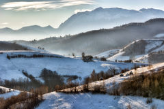 Giorno soleggiato congelato di un inverno, sulle colline selvagge della Transilvania Immagine Stock