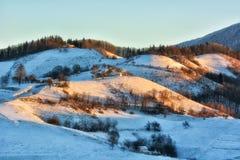 Giorno soleggiato congelato di un inverno, sulle colline selvagge della Transilvania Immagini Stock