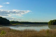 Giorno soleggiato dal lago Fotografie Stock Libere da Diritti