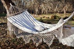 Giorno soleggiato della molla Fotografia Stock Libera da Diritti