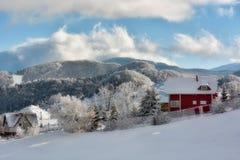 Giorno soleggiato di un inverno, sulle colline selvagge della Transilvania con le montagne di Bucegi nel fondo Fotografie Stock Libere da Diritti