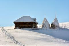 Giorno soleggiato di un inverno, sulle colline selvagge della Transilvania romania Fotografie Stock Libere da Diritti