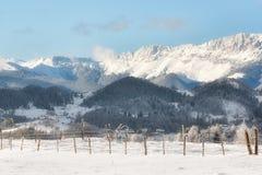 Giorno soleggiato di un inverno, sulle colline selvagge della Transilvania romania Fotografia Stock