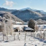 Giorno soleggiato di un inverno, sulle colline selvagge della Transilvania romania Immagini Stock