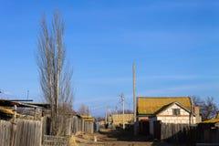 Giorno soleggiato e un pioppo solo Fotografia Stock Libera da Diritti