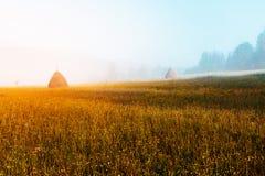 Giorno soleggiato fantastico Fotografia Stock Libera da Diritti