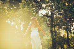 Giorno soleggiato in natura fotografia stock
