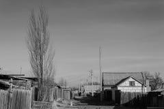 Giorno soleggiato nel villaggio, un pioppo solo Fotografie Stock