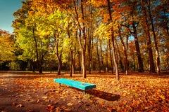 Giorno soleggiato in parco all'aperto con gli alberi variopinti ed il banco di autunno Immagine Stock