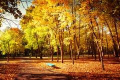 Giorno soleggiato in parco all'aperto con gli alberi variopinti ed il banco di autunno Immagini Stock
