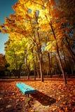 Giorno soleggiato in parco all'aperto con gli alberi variopinti ed il banco di autunno Fotografia Stock Libera da Diritti
