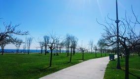 Giorno soleggiato in parco pubblico Immagini Stock Libere da Diritti