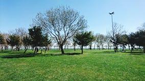 Giorno soleggiato in parco pubblico Fotografia Stock Libera da Diritti