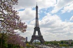 Giorno soleggiato a Parigi Immagini Stock