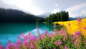 Giorno soleggiato stupefacente nel lago Champferersee nelle alpi svizzere Fotografia Stock Libera da Diritti