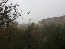 Giorno solo della nebbia di autunno fotografia stock
