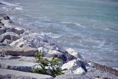 Giorno ventoso in mare con le grandi onde contro le rocce Immagine Stock