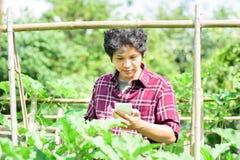 Giovane agricoltore asiatico che utilizza smartphone nell'agricoltura Fotografie Stock
