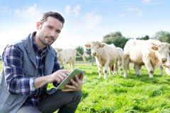 Giovane agricoltore attraente che utilizza compressa in un campo Fotografia Stock
