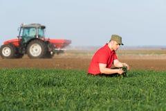 Giovane agricoltore che examing grano piantato mentre il trattore sta arando il fie Fotografie Stock Libere da Diritti