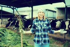 Giovane agricoltore che raccoglie erba con la forca Immagini Stock