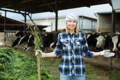 Giovane agricoltore che raccoglie erba con la forca Immagine Stock