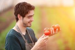 Giovane agricoltore di affari che lavora all'azienda agricola Fotografia Stock Libera da Diritti