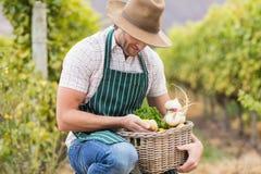 Giovane agricoltore felice che tiene un canestro delle verdure Fotografia Stock