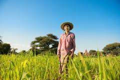Giovane agricoltore femminile asiatico Immagini Stock